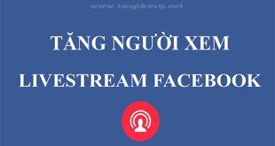 cách tăng người xem livestream