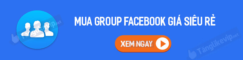 mua-group-facebook-gia-sieu-re-2021