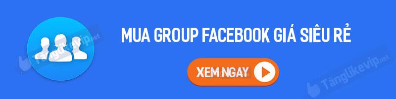 mua-group-facebook-gia-sieu-re-2021