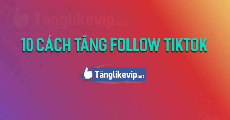10-cach-tang-follow-theo-doi-tiktok-mien-phi