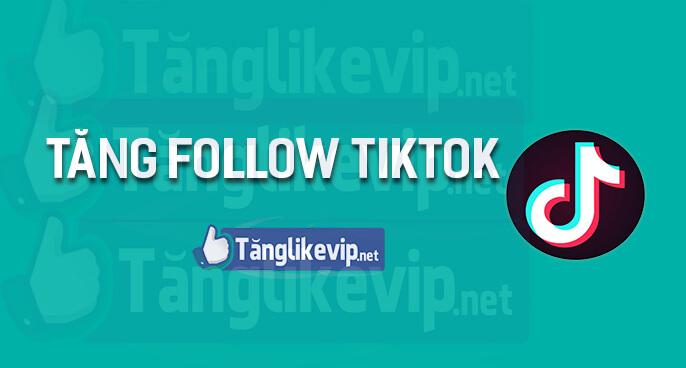 tang-follow-tiktok-tang-theo-doi-tiktok