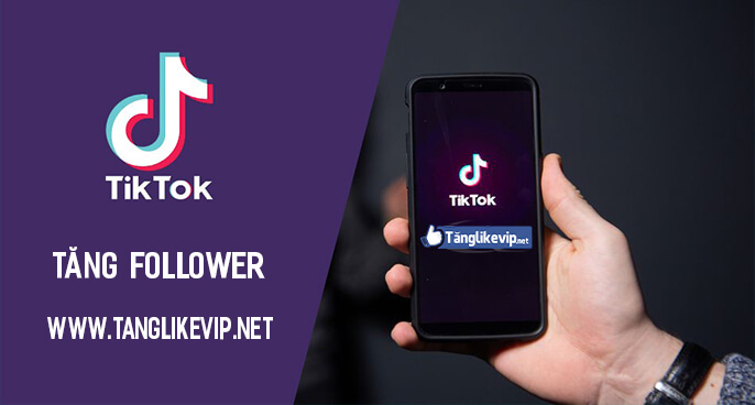 tang-theo-doi-follow-tik-tok