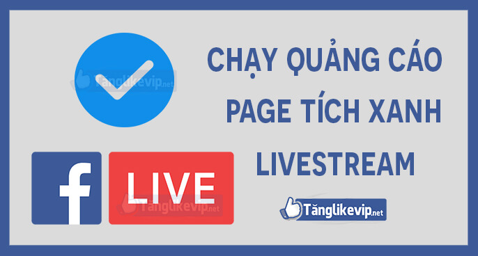 chay quang cao livestream page tich