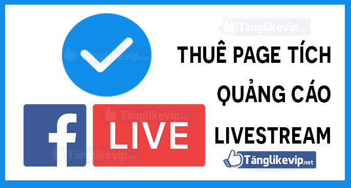 thue-page-tich-xanh-quang-cao-livestream-ads