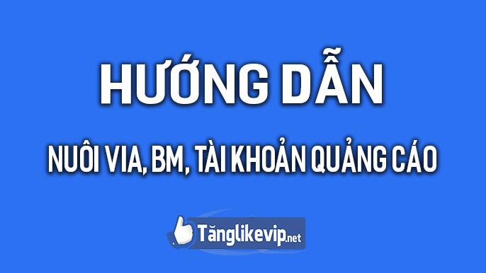 huong-dan-nuoi-via-bm-tai-khoan-quang-cao