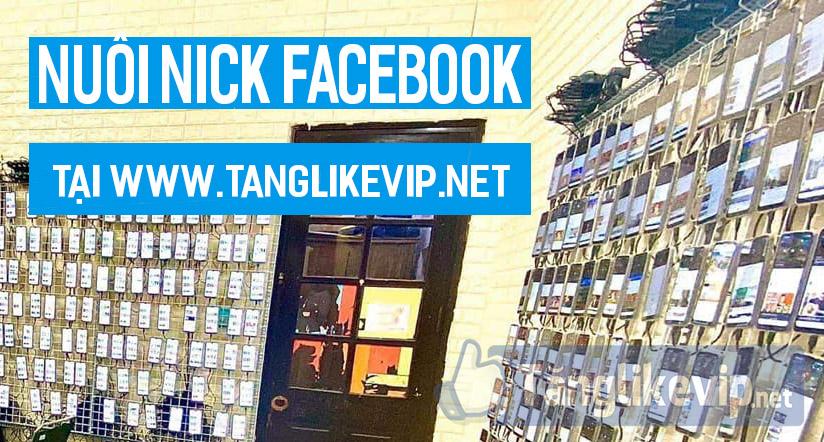 nuoi-nick-via-facebook