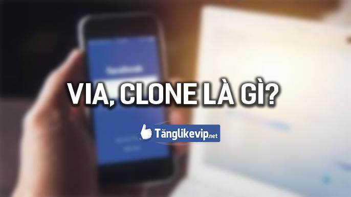 via-la-gi-clone-facebook-la-gi