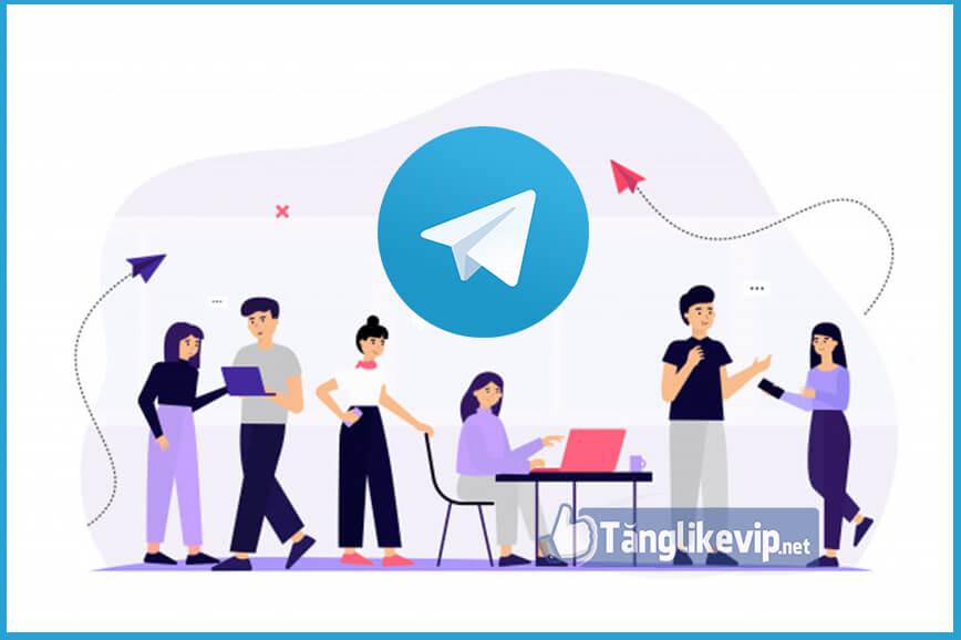 tang-member-telegram-hieu-qua